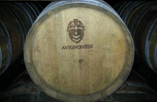 Avignonesi winery, Tuscany