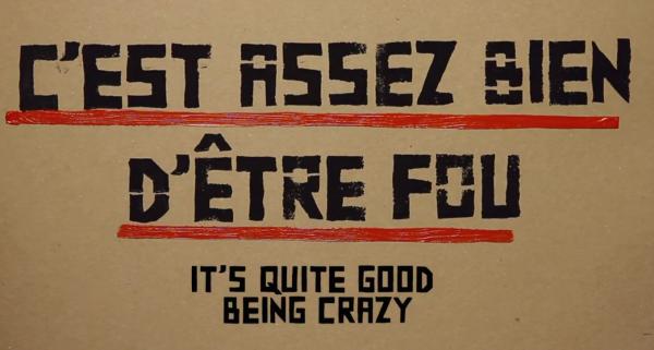 C'est assez bien d'être fou / It's quite good being crazy, road movie by Antoine Page and Zoo Project
