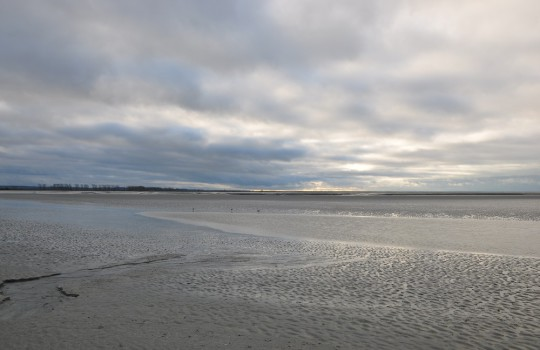 Mont Saint Michel Bay and polders (Normandy, France) walk at low tide | Mont Saint-Michel winter escape | LegendaryTrips