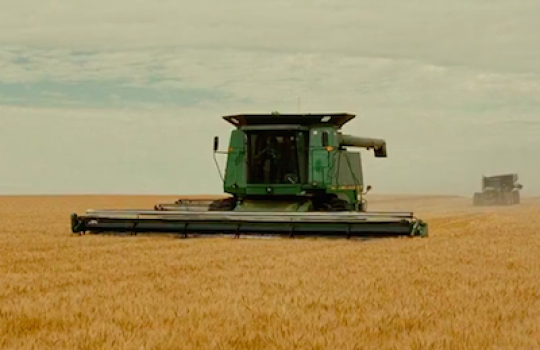 Grain harvest, Carthage South Dakota (Into the Wild, 2007)