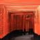 Red gates of Fushimi Inari-taisha temple Kyoto Japan