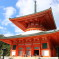 Konpon Daito Pagoda Koyasan Japan