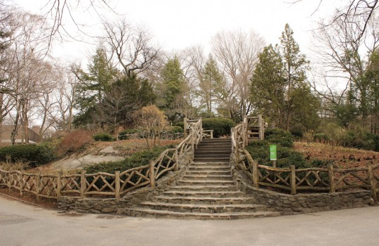 Shakespeare's garden, Central Park, New York