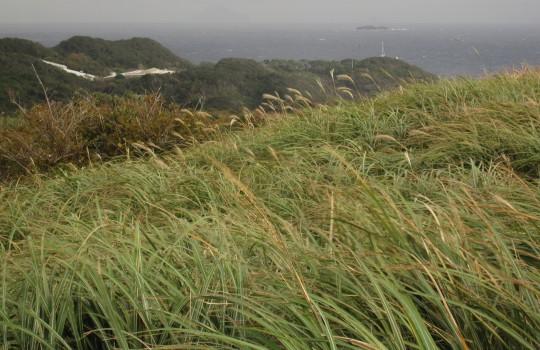 Izu Peninsula, Japan