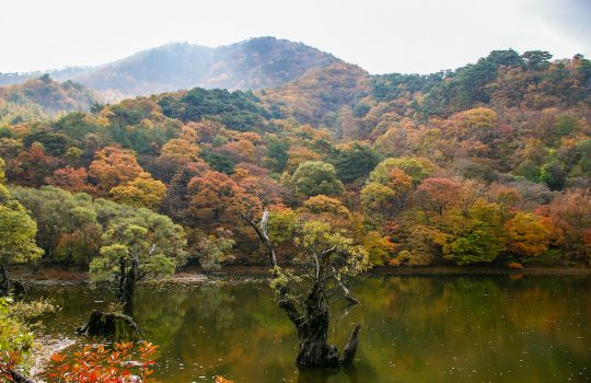 Jusanji Pond south korea filming location spring summer