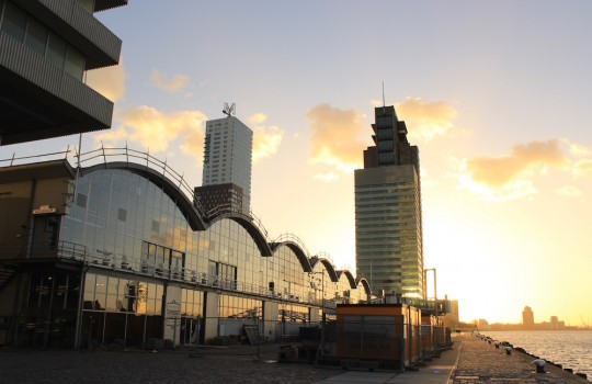 Kop van Zuid, Rotterdam Docks, Netherlands, 24 hours in Rotterdam itinerary LegendaryTrips