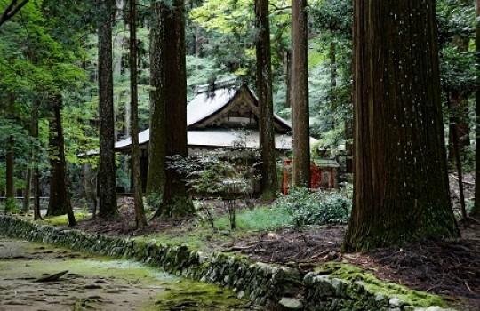 Kozanji, Kyoto