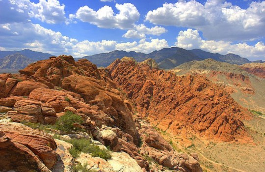 Mojave Desert Calico Basin Red Rock United States Wild (2014) filming locations and itinerary