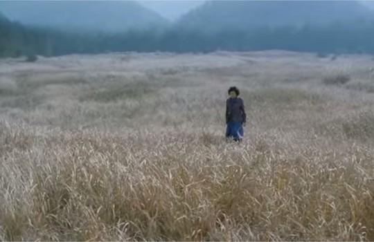 Opening scene, Jeolla, South Korea, Mother (2009)