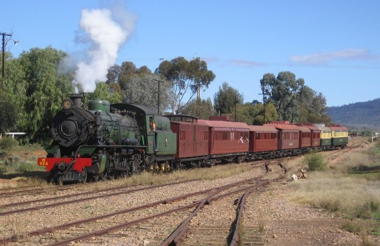 Trains in Quorn Australia
