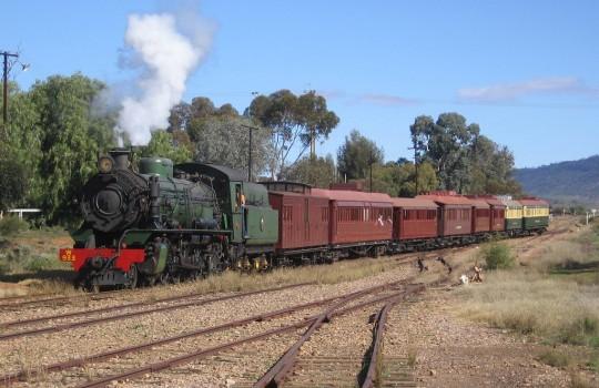 Trains in Quorn Australia