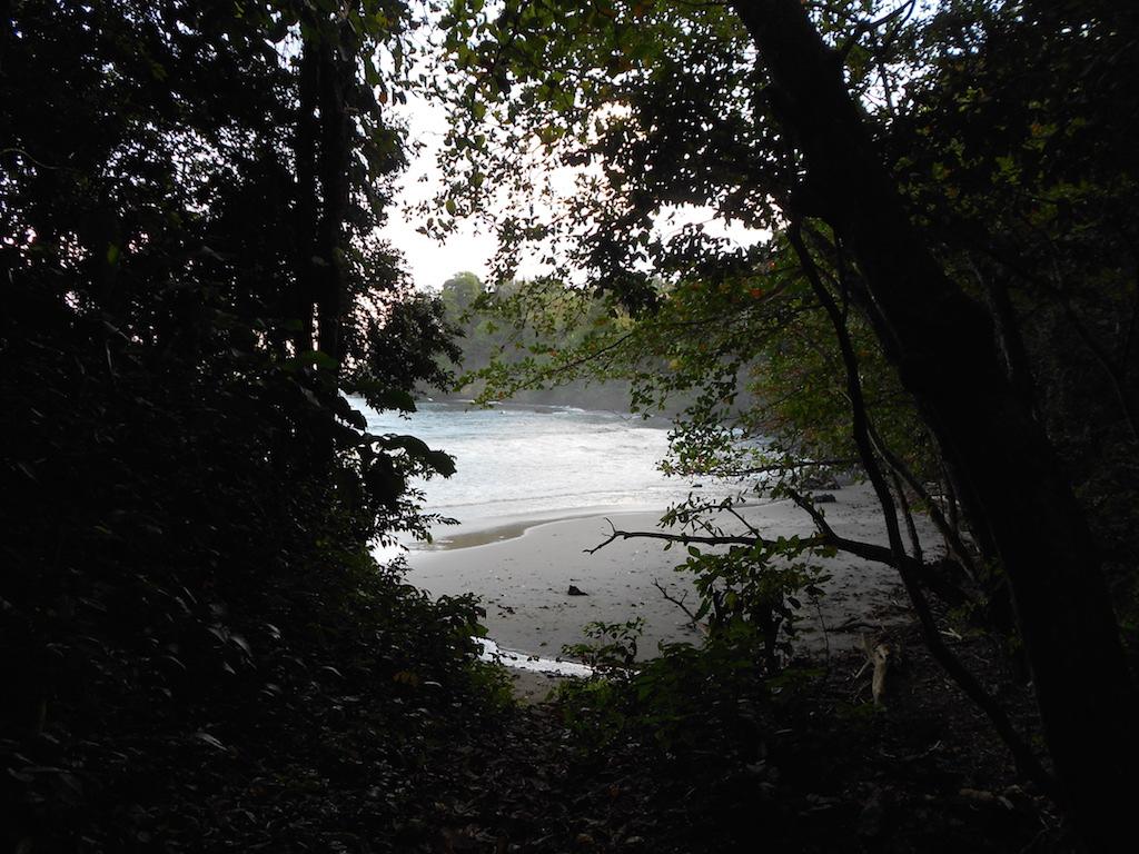 Hiking Paria Bay, Beach - Trinidad and Tobago